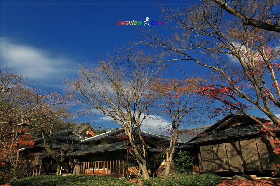 日本的庭园