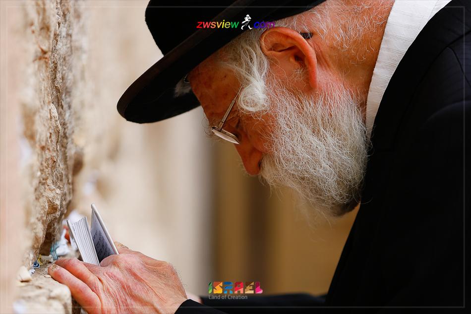 以色列的复国之路1