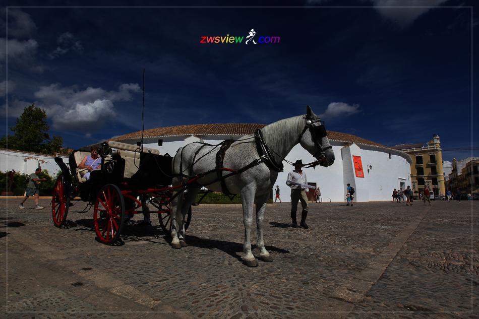 安达卢西亚浓缩的西班牙 6