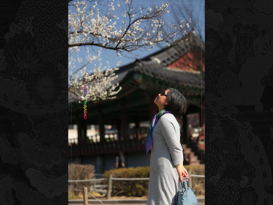 韩国首尔发布《孕妇指南》
