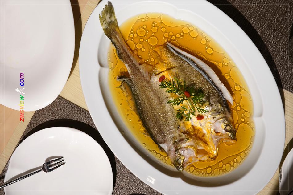 消失的野生东海黄鱼